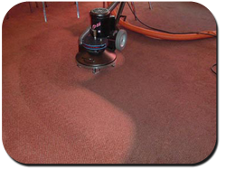 Carpet Cleaning by Ulverclean